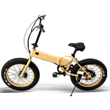 20 *4.0 inch electric fat tire foldable bike
